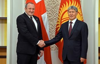 Киргизия и Грузия готовы развивать торгово-экономические связи