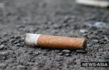 Турсезон и бизнес в Киргизии подкосит новый законопроект против курения