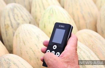 На центральном рынке Оша прошел рейд по проверке качества овощей и фруктов