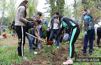 Президент Киргизии заступился за Ботанический сад имени Э. Гареева в Бишкеке
