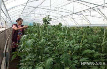 В Киргизии подходит к концу проект Европейского Союза по развитию сел Джалал – Абадской области