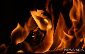 В Казахстане пенсионерка сожгла новорожденную внучку