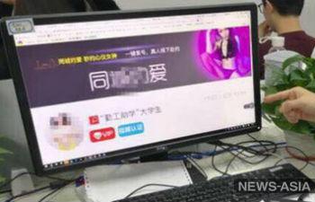 В Китае разработали виртуальных роботов - любовниц для сайтов знакомств