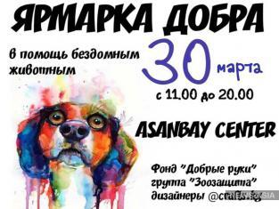 В Бишкеке проведут благотворительную ярмарку в помощь бездомным животным