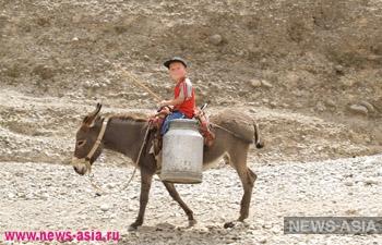 Без воды, дорог и интернета. Жители отдаленных сел Кыргызстана бьют тревогу