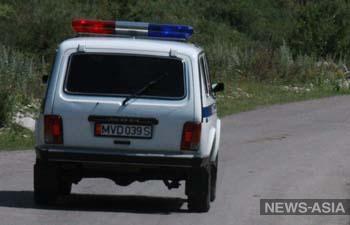В Лебединовке убит пенсионер