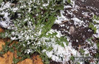 В Восточном Казахстане выпал мокрый снег, похолодание накроет всю страну