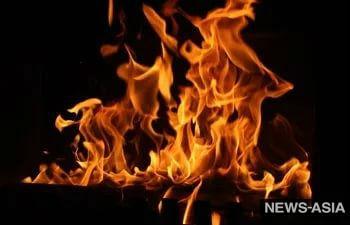В столице Кыргызстана сгорел мини-зоопарк