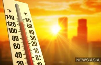 Жара в Узбекистане: термометры синоптиков и граждан показывают разные отметки