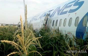 В Подмосковье чайки заставили самолет совершить жесткую посадку