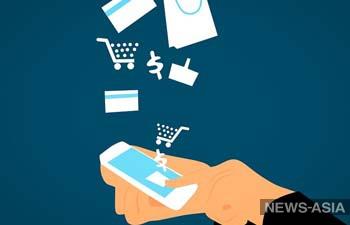 В Кыргызстане появилась грузинская система электронных платежей FINTENO