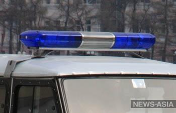 Участников одиночных пикетов в Москве задержала милиция