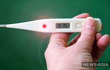 Бишкекчан, заболевших ОРВИ и гриппом, просят вызывать врачей на дом
