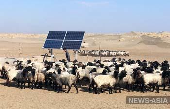 В Туркменистане в пустыне Каракум установили солнечные батареи