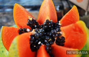Коронавирус из Китая нашли у африканских коз и плодов папайи