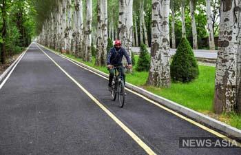 Мэрия Бишкека проведет для горожан велопробег на 10 км