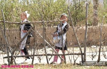 Россия скоро приступит к строительству пяти школ в Таджикистане