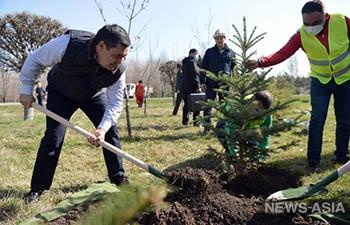 Президент Садыр Жапаров провел субботник