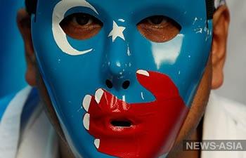 Правозащитники призывают Китай освободить уйгурского ученого