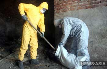 Могильники с пестицидами - серьёзная угроза для здоровья людей