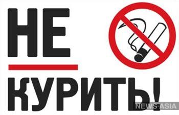 В Бишкеке возобновились «антитабачные рейды»