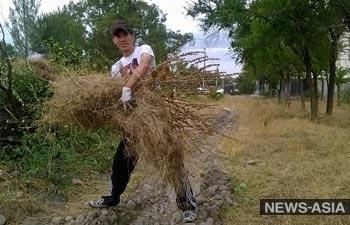 В парке «Ататюрк» сотрудники «Зеленстроя» высадили несколько сотен деревьев