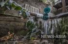В бишкекском Ботаническом саду имени Э.Гареева, крупнейшем в Центральной Азии, в оранжереях погибли около 30% коллекции тропических растений.